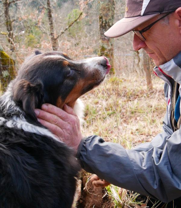 Complicité chien homme dans la nature